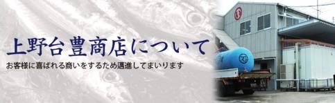 上野台商店について